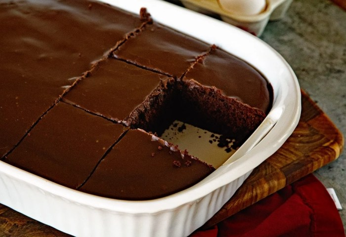 Homemade Chocolate Cake With Chocolate Frosting Julies Eats Treats