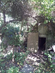 Shed, with path leading to it