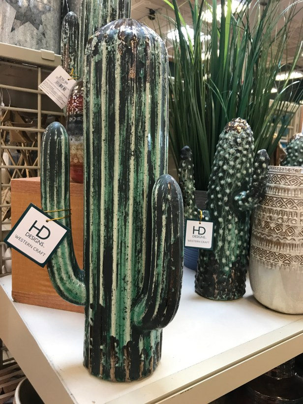 cactus faves