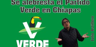 Logo partido Verde