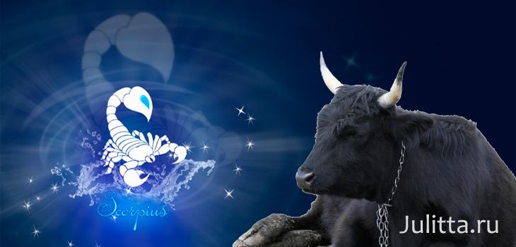 Картинка скорпион и бык