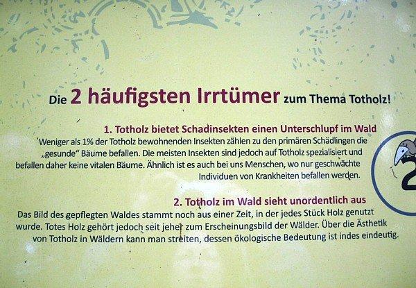 Totholz (2)