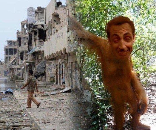 Ape in the dschungle (2)