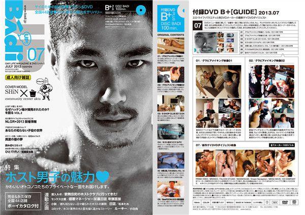 BADI-201307D