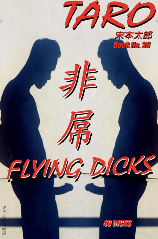 Taro 37 + Book 36 – Flying Dicks