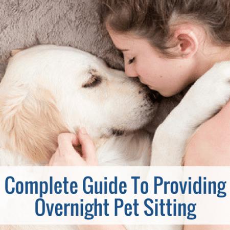 overnight pet sitting