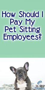 how-should-i-pay-my-pet-siting-employees