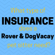 rover insurance