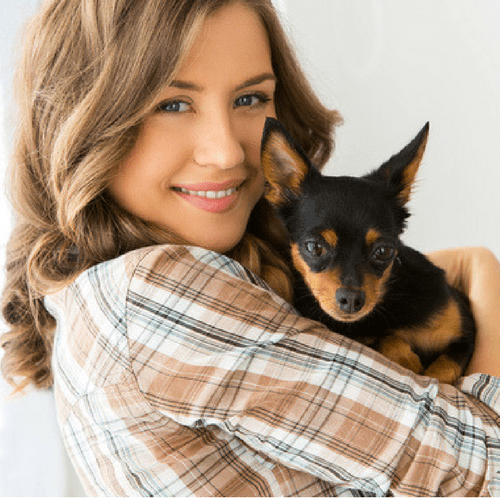 A Review Of The Industry's Dog Walking Business Coaches