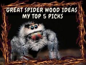 Great Spider Wood Aquascape Ornament