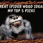 Great Spider Wood Aquascape Ornament