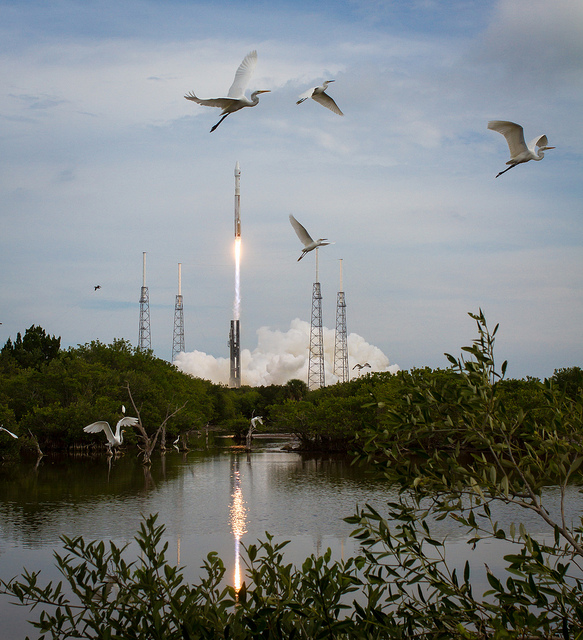 MAVEN Atlas V Launch