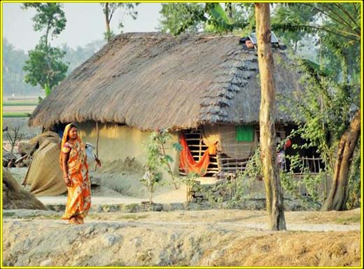 bhola-grandpa-lived-in-a-hut-under-bokal-tree