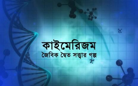 Chimera-in-bengali