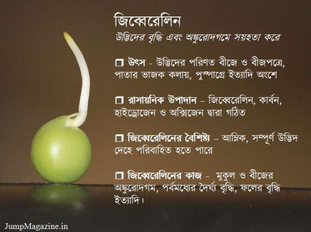 gibberellin_in_bengali