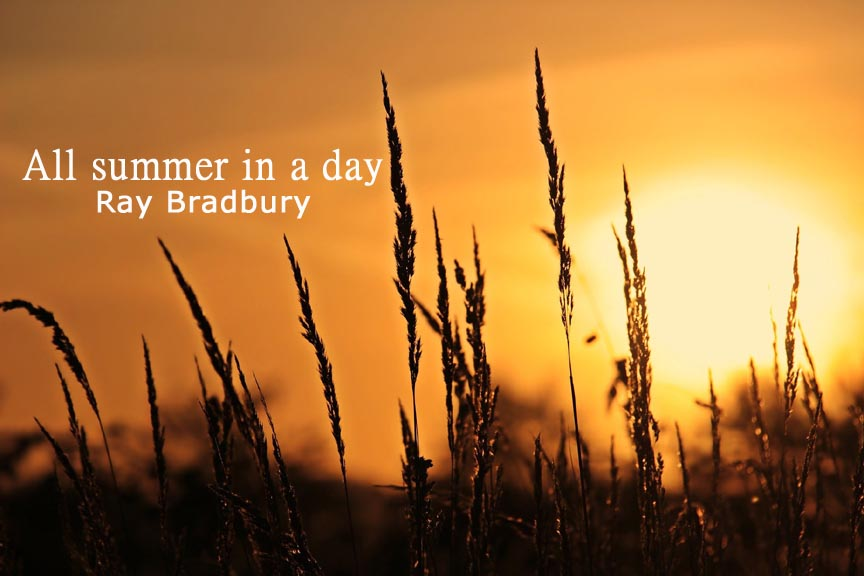 All-summer-in-a-day