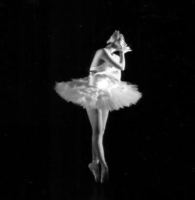 神奈川県芸術舞踊祭 NO.92 ダンスカナガワフェスティバル 「瀕死の白鳥」2010年6月5日