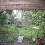 ダガット村の家屋から見た景色