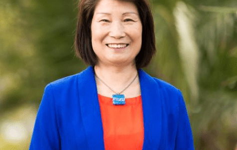 Greens' Sophia Sun says Australian government becoming more like China