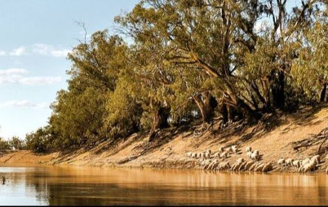 Murray-Darling Residents Advocate for Government Change