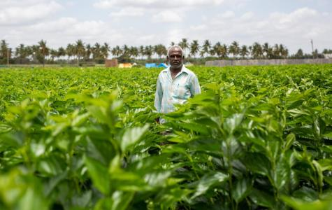 Indian farmers struck by deteriorating conditions