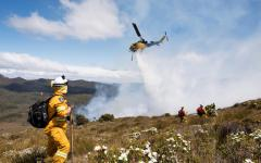 Bolt from the blue: Tasmania's incendiary new reality