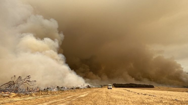 Backburns mix with bushfires on Kangaroo Island in early January. Large parts of the island were devastated.