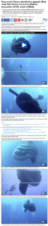Divers encounter Mola mola fish and record video off the island of Gozo in Malta - Daily Mail Online.clipular
