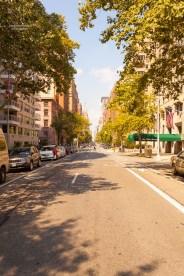 Einfach auf der 5th Avenue stehen für ein Foto, das geht am Anfang dieser berühmten Straße. http://junghahn24.com/frueh-aufstehen-fuer-eine-alte-dame-freiheitsstatue/ http://junghahn24.com/neue-hoehen-werden-erobert-empire-state-building/
