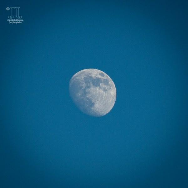 Der Junimond, der sich hier als zunehmender Mond am Himmel im Juni 2020 zeigt.