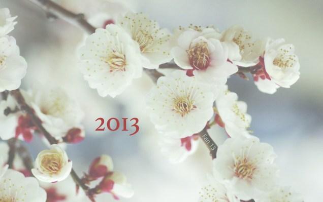 JIW Delights 2013  Blossoms White.jpg