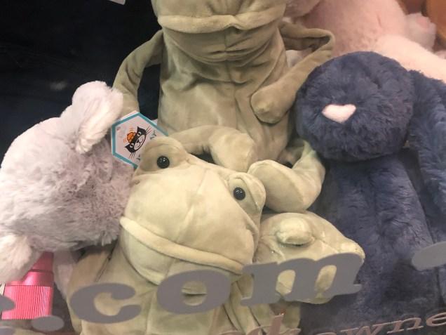 2019 Frog Encounters Fan 13 3.JPG