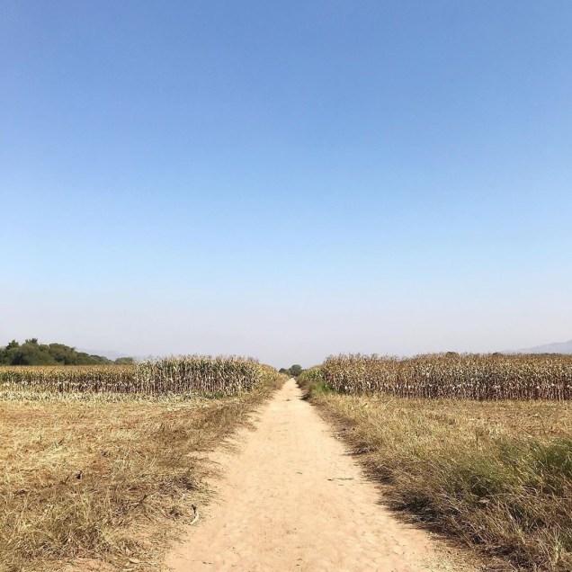 Jung Il-woo walking El Camino de Santiago. May 2019 10