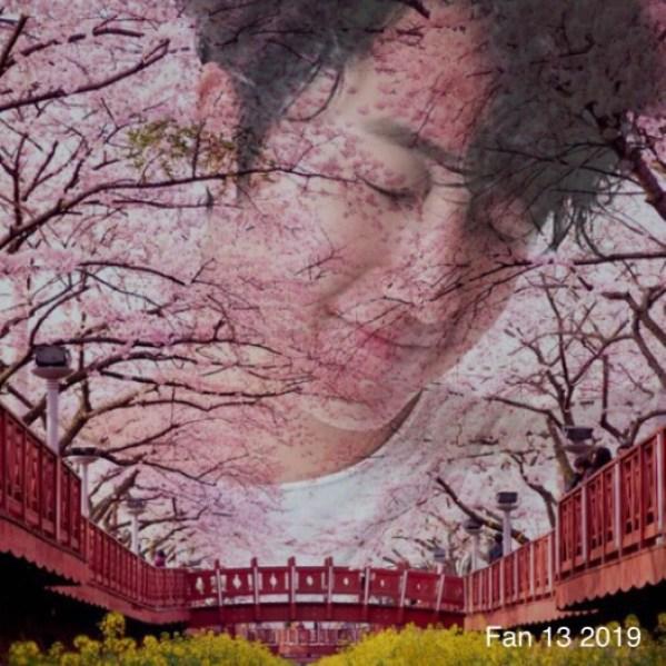 2019 7 1 Jung Il-woo in Cherry Blossom July! By Fan 13 2.JPG