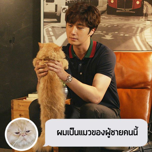 2017 Jung Il woo in Love and Lies with cat. Cr. True4U 2