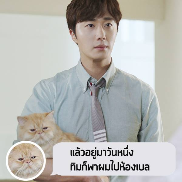 2017 Jung Il woo in Love and Lies with cat. Cr. True4U 8