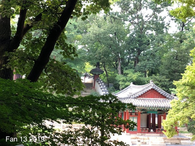 Changdeokgung Palace. Photos by Fan 13, www.jungilwoodelights.com. 2019 22