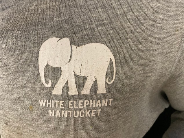2019 Elephant Encounters by Fan 13 in 2019 7