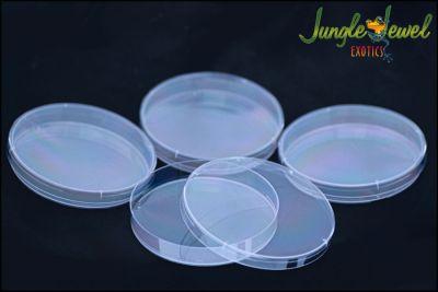 Petri Dish 4 pack