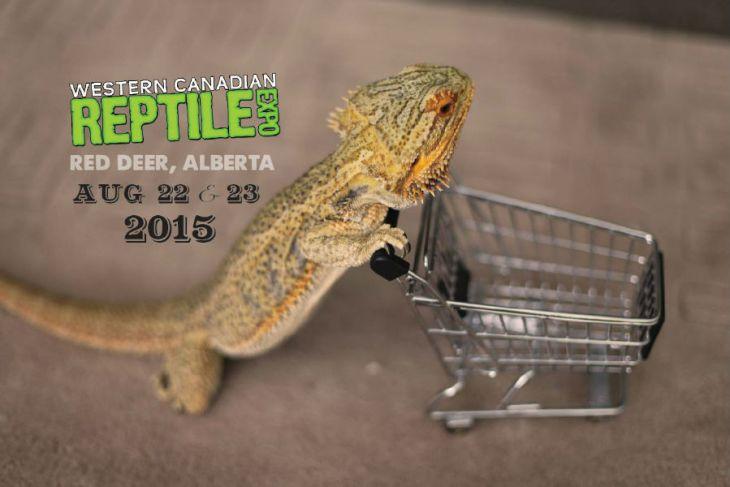 Jungle Jewel Exotics to attend WCRE 2015