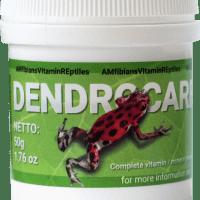 Dendrocare 50gm