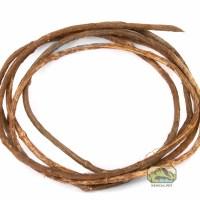 newcal Corkscrew Liana Vine thin full coil