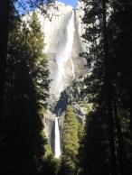 Yosemite Falls 2010