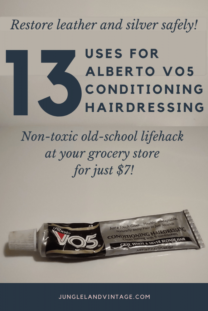 Restore Leather and Silver with Alberto VO5 Conditioning Hairdressing