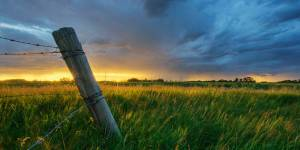 Building Fences & Taking Sides