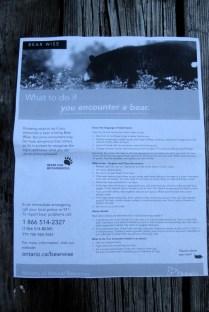 Infomaterial Bear Awareness V