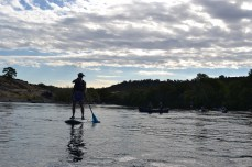 Zach Probert, Chico State student Stand-up paddle boarding on the Sacramento River.