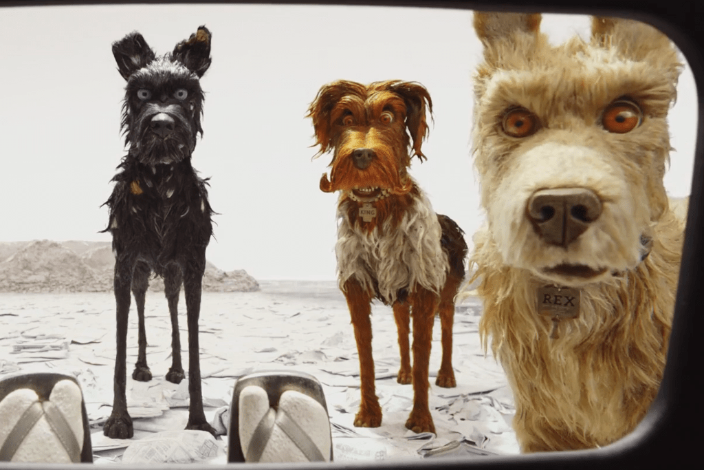 Image result for wes isle of dogs