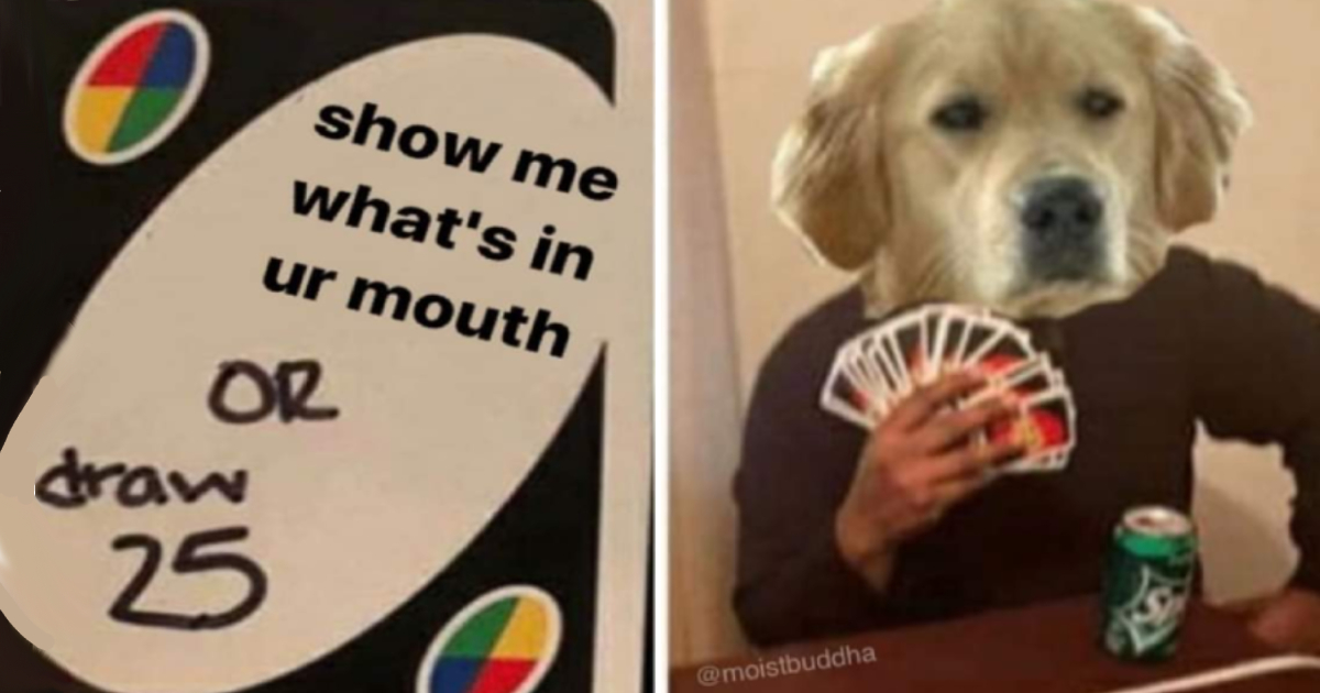 Draw 25 Uno Memes Are The Best Way To Reval Your Biggest Fears
