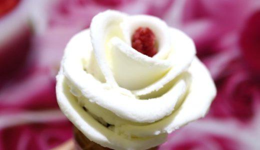 バラ盛りジェラードが大人気!名古屋・「ミルキッシモ」気になるメニューと値段は?